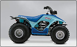 89_breeze_blu_r34 yamaha atv history yamaha breeze 125 wiring diagram at honlapkeszites.co