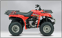Yamaha  Bear Tracker  Wheeler
